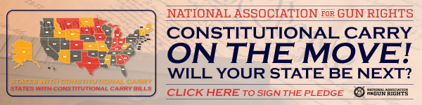 Click here to sign your Constitutional Carry pledge!